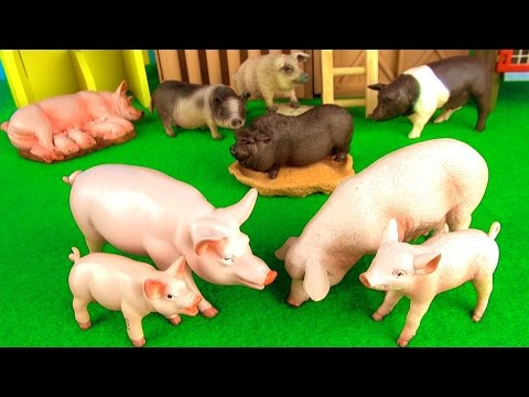 Farm Animals Kids Toys | Fun Facts about Pigs in English | Funny ending!