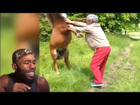 *WARNING* Funniest Fail Army | Hilarious Farm Animal Fails Reaction!
