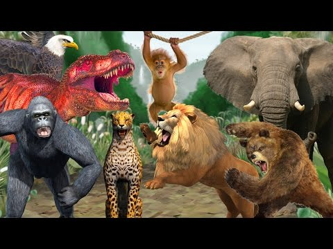 Learn Colors with Animal Sounds Funny Animal Compilation Learn Wild Animals for Children Kids Babies