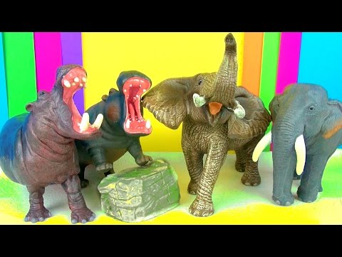 Wild Animals Kids Toy Collection Elephants and Hippopotamus Kids Zoo Toys Review Funny Ending