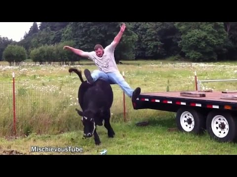 Funny Animals | Farm Animals are CRAZY | TRY NOT TO LAUGH | 2017