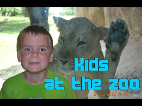 Kids Play With Animals In The Zoo Compilation 2016 – NEW HD