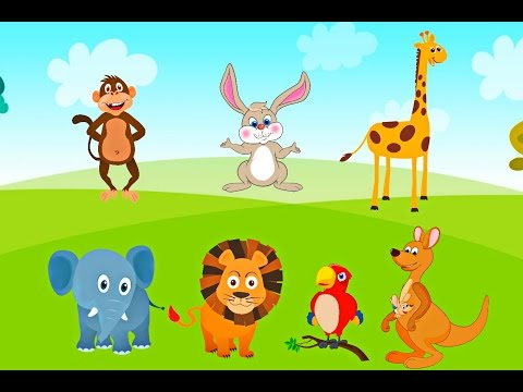 Funny cartoon wild animals for kids entertainment | Learn Animals names in English