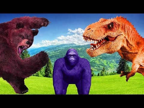 Learn Animals With Colors Funny Animal Compilation Shocking Video Of Wild Animals Cute Animal Videos