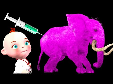 Funny Little Babies Doctor Syringe Wild Animals Finger Family Rhymes | Five Little Babies Collection