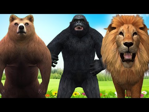 Wild Animals Dancing & Playing for Nursery Rhymes | Funny Cartoons Animal Rhymes for Children
