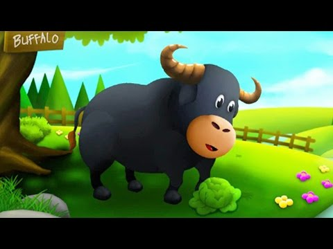Baby Learn Farm Animals Names & Sounds Feed Animals Funny Cartoon Characters