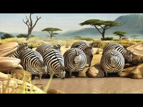 Rollin` Safari – What If Animals Were Round? || Pets Funny