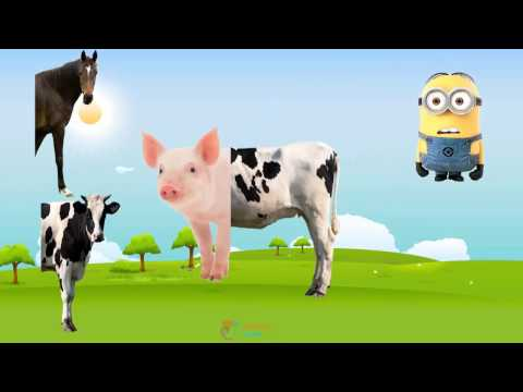 Farm Animals with Wrong Body –  Funny Animals Video for Kids –  Learn Farm Animals names and sounds