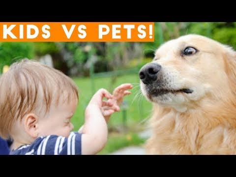 Ultimate Cute Pets vs. Epic Kids Fails Compilation | Funny Pet Videos May 2018