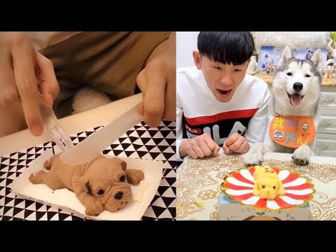 Dog Reaction to Dog Cake – Funny Dog Cake Reaction Compilation