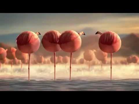 Fat Balloon Wild Animals