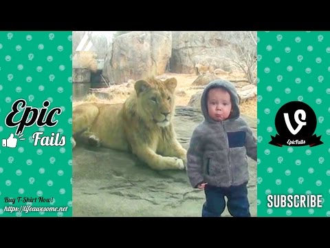 Funny Kids at the Zoo (Part 2) – Funny Animals Vines Compilation 2017  – Try Not To Laugh Challenge