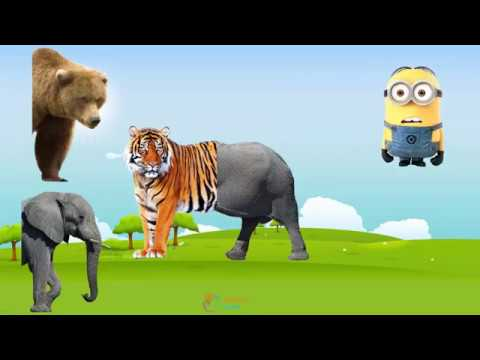 Wild Animals with Wrong Body  –  Learn Animals names and sounds –  Funny Animals Video for Kids