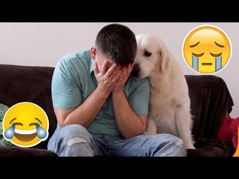 Funny Dog Reaction to me Crying – PRANK (BEST REACTION EVER)