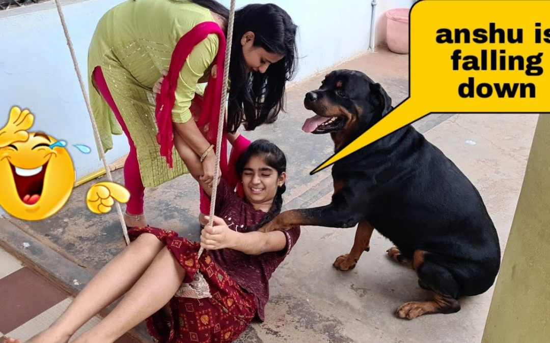 Anshu is falling down because of my dog||funny dog videos.