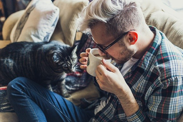 Finally A Great Article That Has The Very Best Tips About Cats